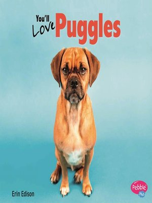 cover image of You'll Love Puggles