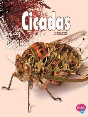 cover image of Cicadas