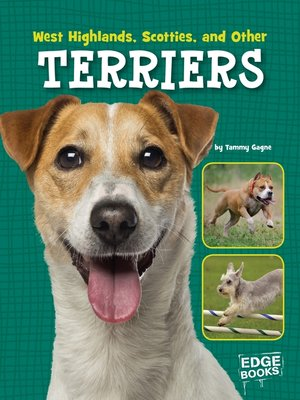 cover image of West Highlands, Scotties, and Other Terriers