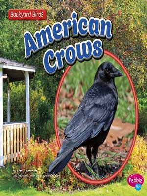 cover image of American Crows