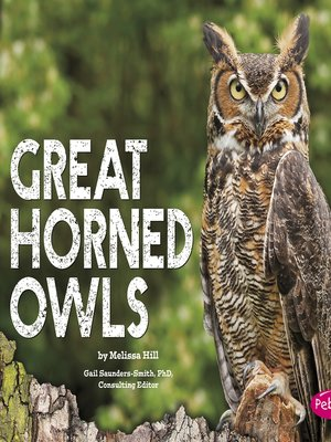 cover image of Great Horned Owls