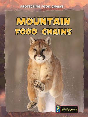 cover image of Mountain Food Chains