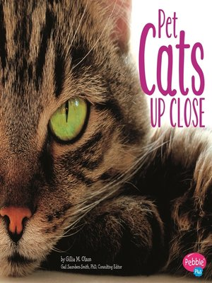 cover image of Pet Cats Up Close