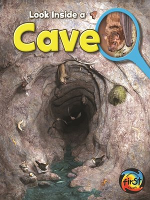 cover image of Cave