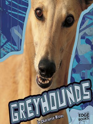 cover image of Greyhounds