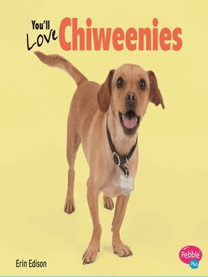 cover image of You'll Love Chiweenies