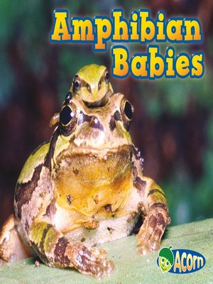 cover image of Amphibian Babies