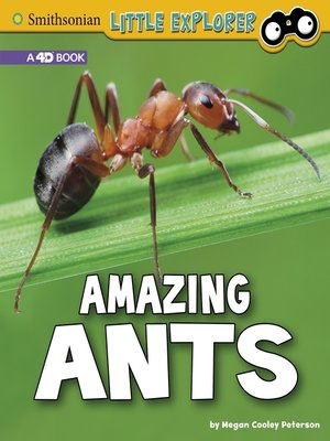 cover image of Amazing Ants