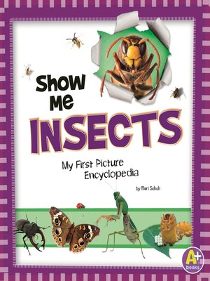 cover image of Show Me Insects