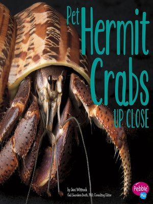 cover image of Pet Hermit Crabs Up Close