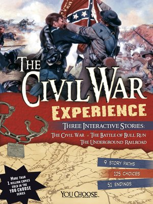 cover image of The Civil War Experience