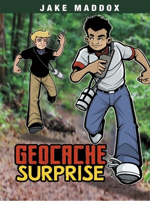 cover image of Geocache Surprise