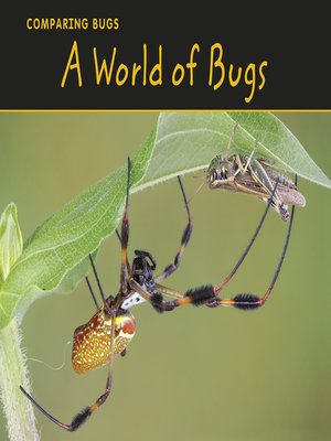 cover image of A World of Bugs