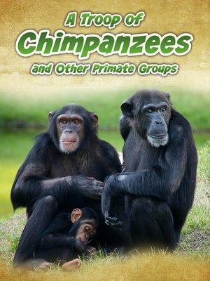 cover image of A Troop of Chimpanzees