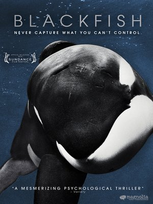 cover image of Blackfish