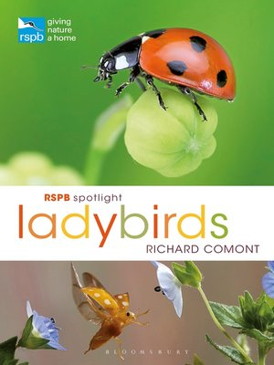 cover image of RSPB Spotlight Ladybirds