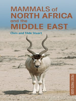pocket guide mammals of east africa