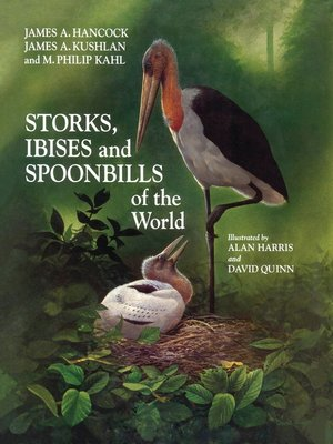 cover image of Storks, Ibises and Spoonbills of the World