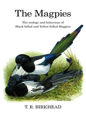 cover image of The Magpies