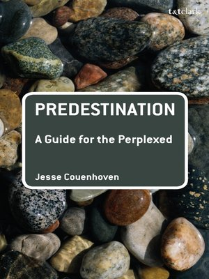 cover image of Predestination