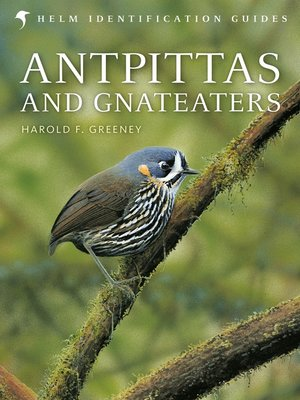 cover image of Antpittas and Gnateaters