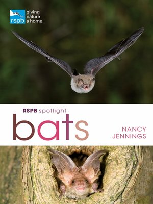 cover image of RSPB Spotlight Bats
