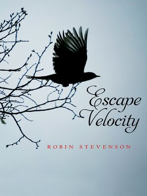 cover image of Escape Velocity