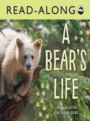 cover image of A Bear's Life