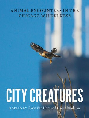 cover image of City Creatures