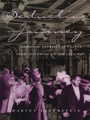 cover image of Seductive Journey