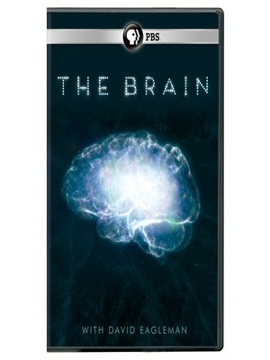 cover image of The Brain with David Eagleman, Season 1, Episode 2