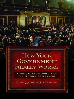 cover image of How Your Government Really Works