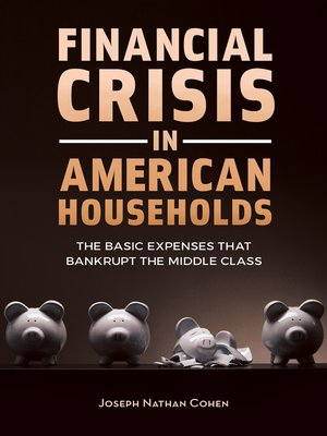 cover image of Financial Crisis in American Households