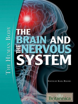 cover image of The Brain and the Nervous System