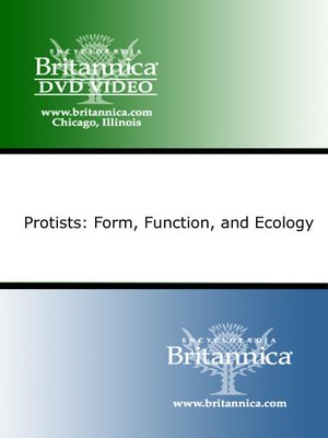 cover image of Protists