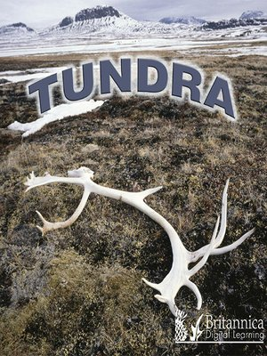cover image of Tundra