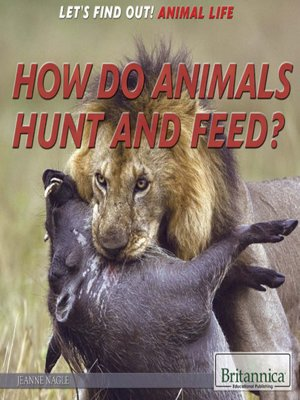 cover image of How Do Animals Hunt and Feed?