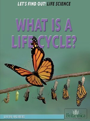 cover image of What Is a Life Cycle?