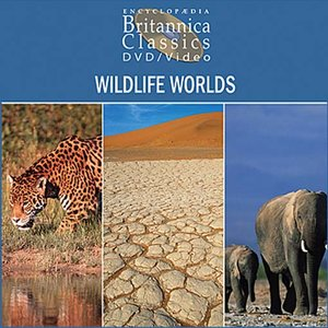 cover image of Wildlife Worlds: Part 4 of 5