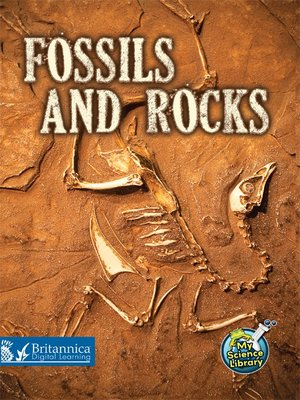 cover image of Fossils and Rocks