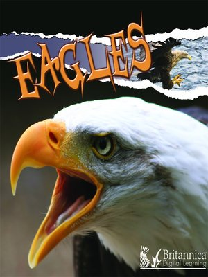 cover image of Eagles
