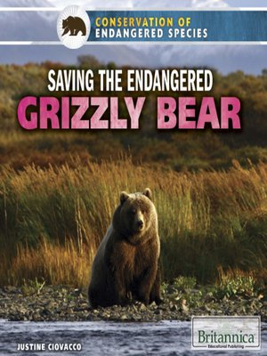 cover image of Saving the Endangered Grizzly Bear
