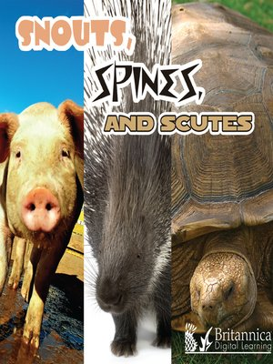 cover image of Snouts, Spines, and Scutes