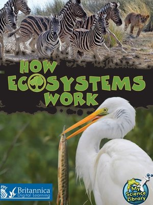 cover image of How Ecosystems Work