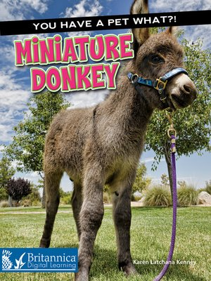 cover image of Miniature Donkey