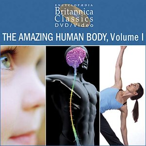 cover image of The Amazing Human Body, Volume 1: Part 4 of 4