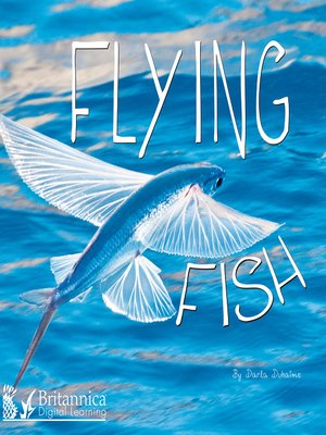 cover image of Flying Fish