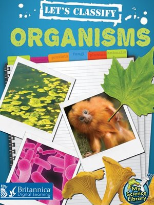 cover image of Let's Classify Organisms