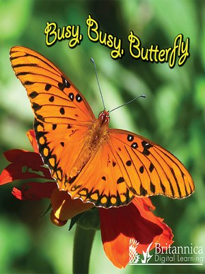 cover image of Busy, Busy, Butterfly