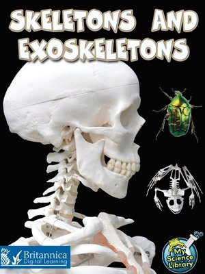 cover image of Skeletons and Exoskeletons